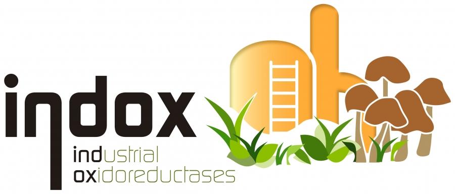 INDOX Project