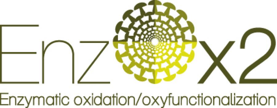 logo_enzox2_s