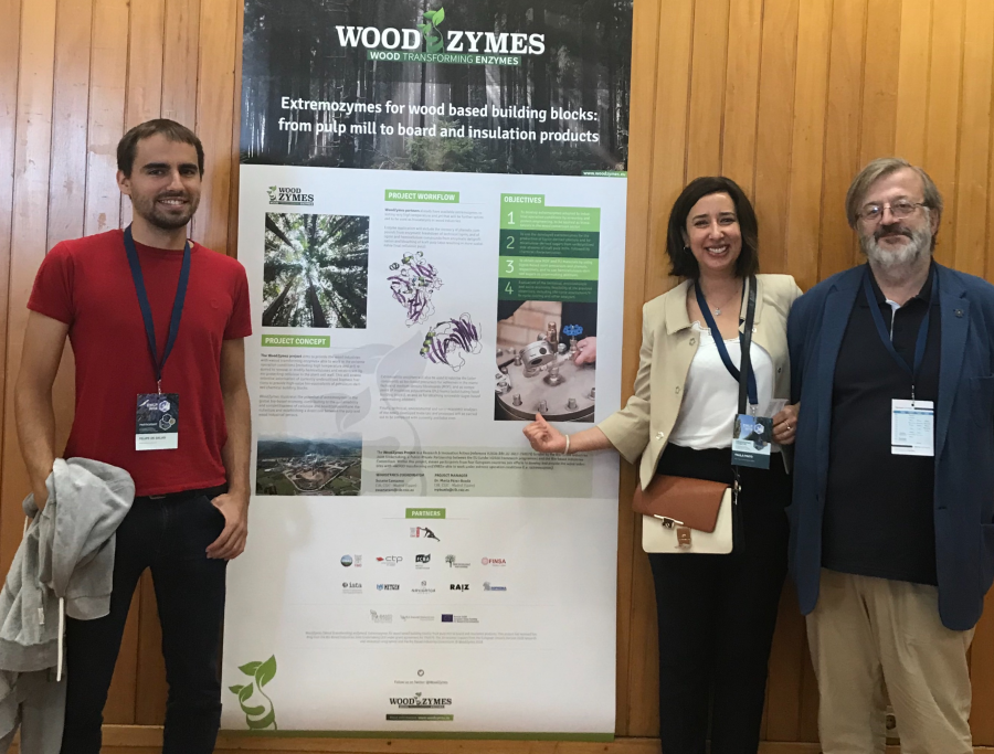 WoodZymes at EWLP 2018