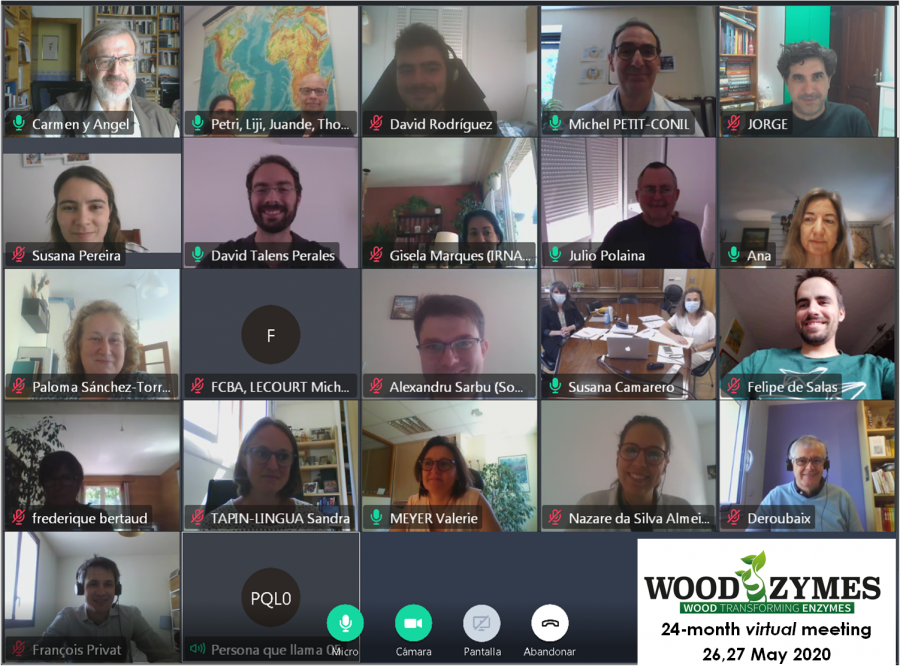 WoodZymes 24M viritual meeting May 2020