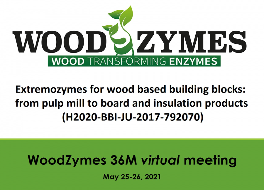 WoodZymes 36-month meeting